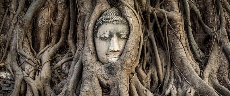 Guide de Ayutthaya et Sukhothai - fameuse tête de Bouddha dans les racines d'un arbre sacré