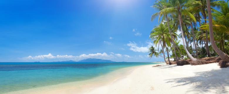 Que faire à Koh Samui - Plage de sable blanc