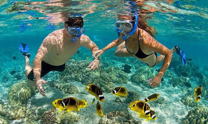 100% de qualité haute couture remise chaude Snorkeling ou randonnée aquatique - Tourisme responsable