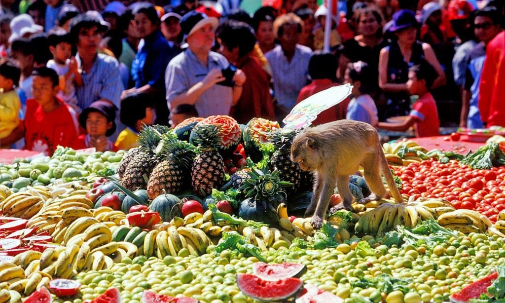 Le festival des singes à Lopburi